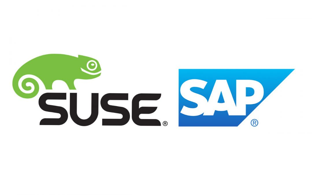 Domani Business Solutions proves the succes of SAP Business One on HANA and SUSE