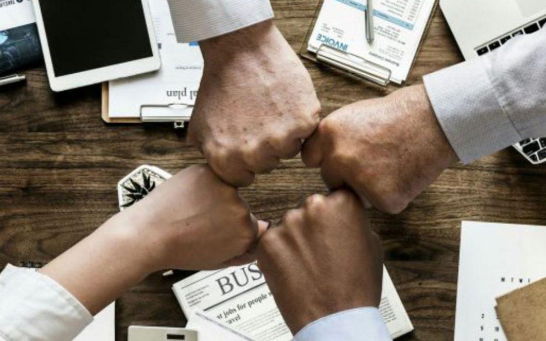 Domani Business Solutions start nieuwe bedrijfsactiviteit onder naam Supply Chain Profs